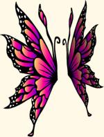 Sunrise Heliconius Wings
