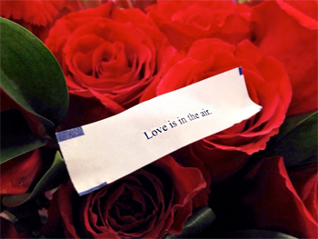 Valentines Day roses and love is in the air fortune